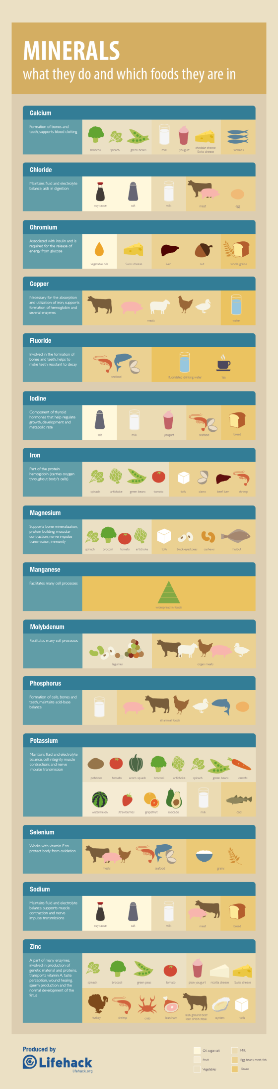 nutrition-minerals-cheat-sheet-food-sources_50cadd535f100